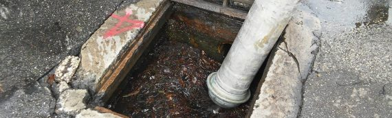 Storm Area Drain Cleaning